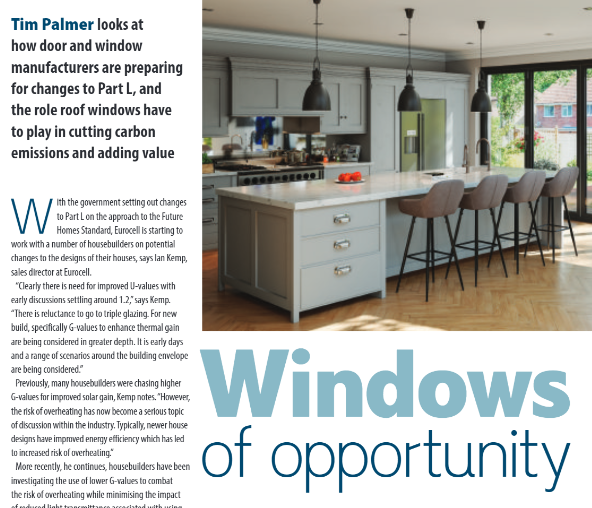 window of opportunity article snippet